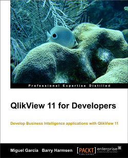 QlikView 11 for Developers book cover